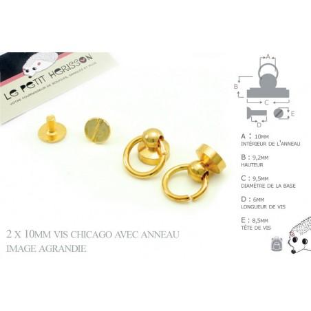 2 x 10mm Vis chicago avec anneau / Metal / Dore