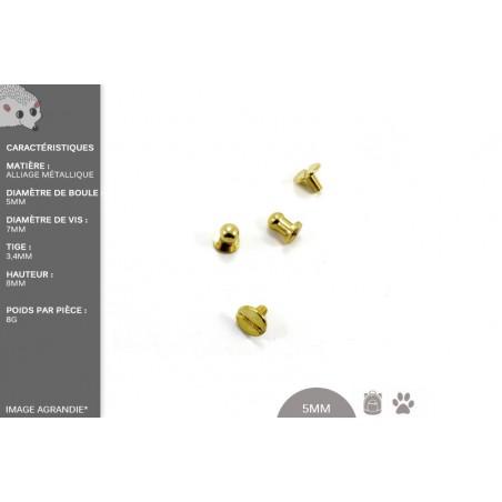 2 Vis Chicago avec Boule / Metal / Dore / Cuirve