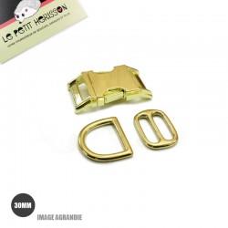 Kit Collier Pour Chien: 30mm / Metal / haute qualité / Laiton